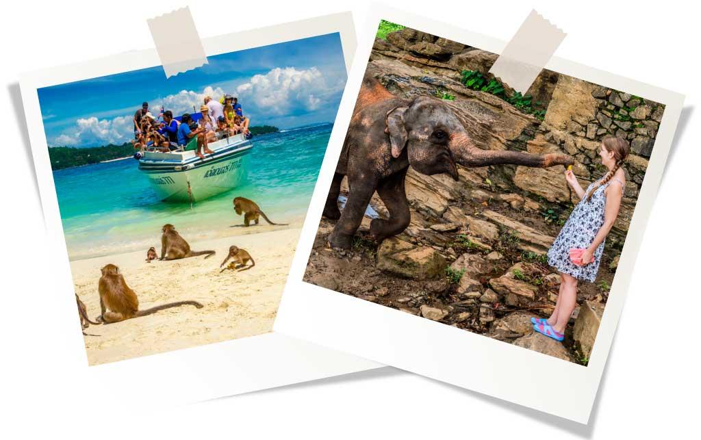 Пляжный отдых в ноябре 2020