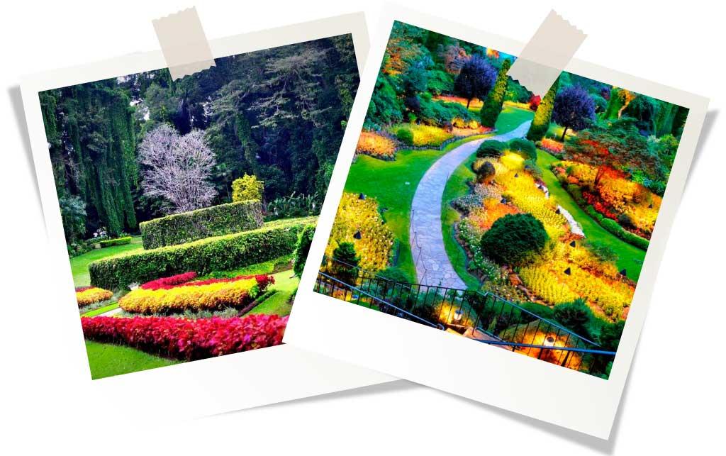 Ботанический сад Перадания